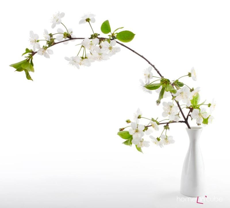 Váza s barborkou. Kolikátý den po sv. Barboře, kdy se květy rozvily, určil nejšťastnější měsíc příštího roku.