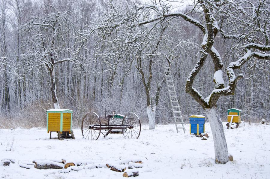 V zimě zahrada odpočívá