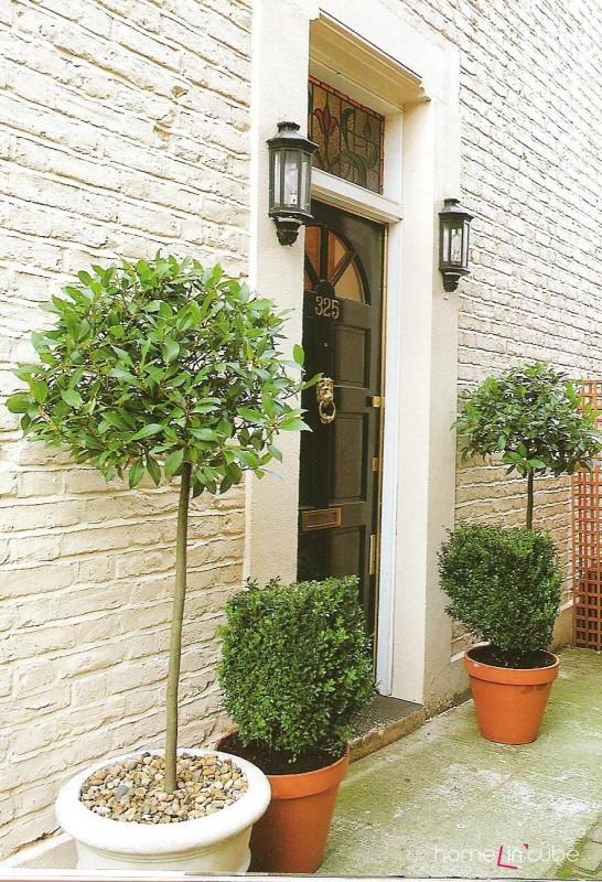 Vstup do domu by měli hlídat dva strážci. Například v podobě větších květin. Mohou to být ale i sochy, svícny...
