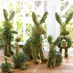 Modely zvířátek můžeme vytvořit z přírodních materiálů, kombinovat suché i živé rostliny.