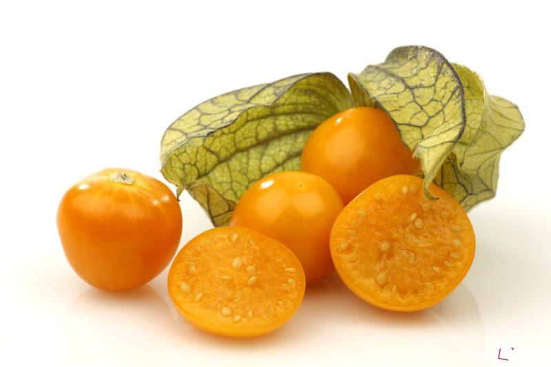 Mochyně nám osvěží nejen zahrádku svými zářícími plody, ale také ji lze použít na ozdobu v domácnosti.