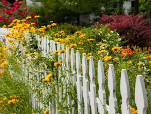 ploty_laťkový plot