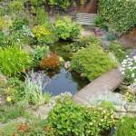 zahradní-jezírka_11