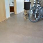 Betonová stěrka odolá psím drápkům i nečistotám z kola. Maldecor Beton.