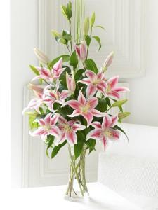 Před transportem lilií a tulipánů je lépe odstranit prašníky, neboť rozprášený pyl by znehodnotil krásu květů.