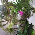 Při utváření celé květinové kompozice dbáme na vyvážený poměr rostlin a dřeva.