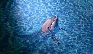 3D podlaha s delfínkem, který prozáří každé dětské srdce.