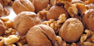 Ořechy necháme pořádně proschnout, aby neplesnivěly.