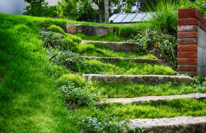 Navezte kámen z poza kopce, který má osobní příběh a identitu.