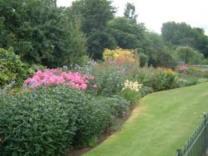 Vybírejte květiny, kterým v daném prostředí bude dařit. Inspirujte se v okolních zahradách.
