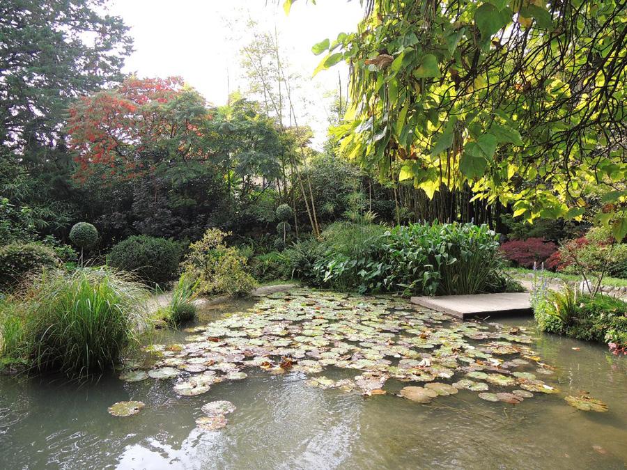 Přítomnost vody vnáší do zahradního prostoru klid i pohyb, příjemné zvukové projevy a významný efekt zrcadlení.