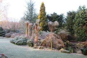 Je-li dobře naplánovaná zahrada, pak bude působit pěkně i zimním období.