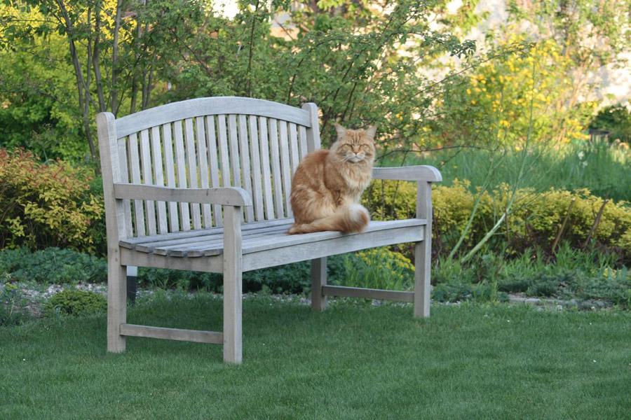 Na pohodlnou lavici se každý rád posadí.
