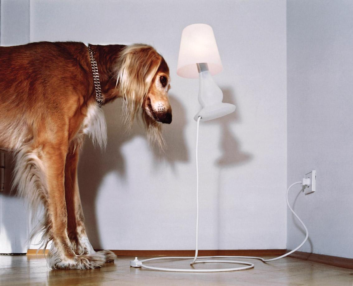 Stolní lampa Flap Flap, Next