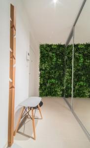 Předsíň dekoruje zelená stěna ve vstupním prostoru
