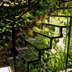 A takhle bude vypadat, když osázíte schodiště zelení.