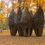 Americký umělec Patrick Dougherty povýšil dovednost pletení z proutí na vysoké umění. Pro svá díla spotřebuje kamióny vrbových prutů.