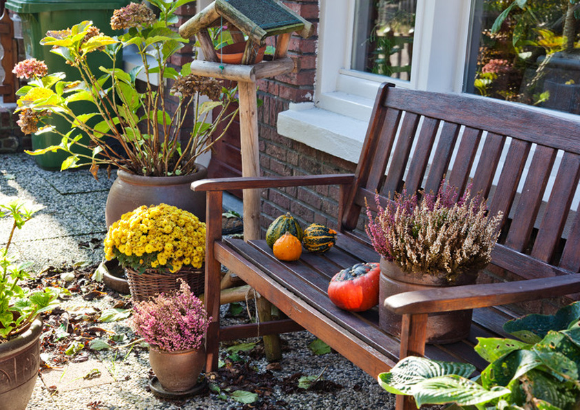 Zahrada je na podzim pestrobarevná