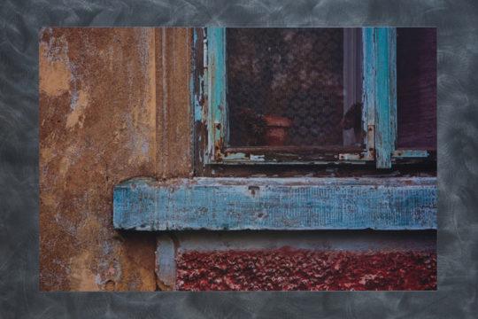 Fotografie Ivety Kopicové tištěná na kovovém podkladu