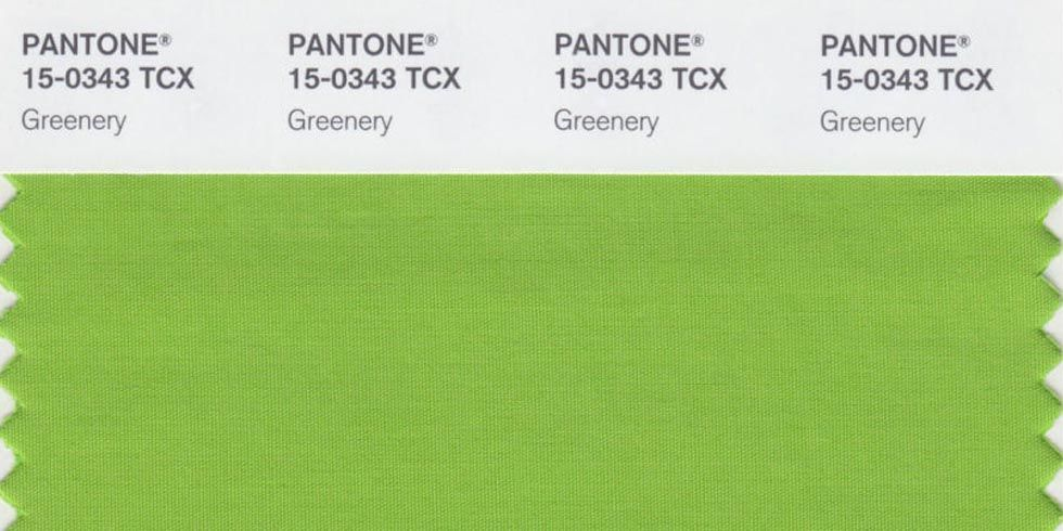 The Pantone Color of the Year je odstín Pantone 15-0343 Greenery