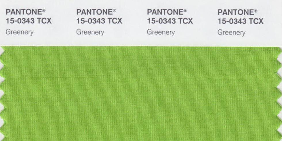 The Pantone Color of the Year je odstín Pantone 15-0343 Greenery