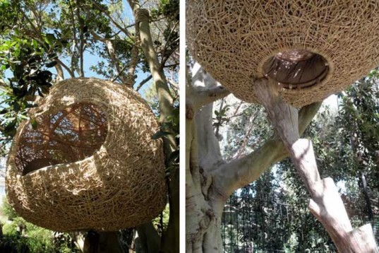 Není divu, že i lidé si stavějí svá hnízda v korunách stromů