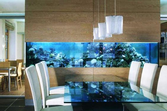 Akvárium nejčastěji tvoří předěl v polyfunkční místnosti.