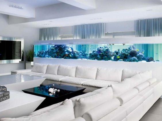 Nezapomeňte, že akvárium vyšší jak 70 cm se nesnadno osvětluje.