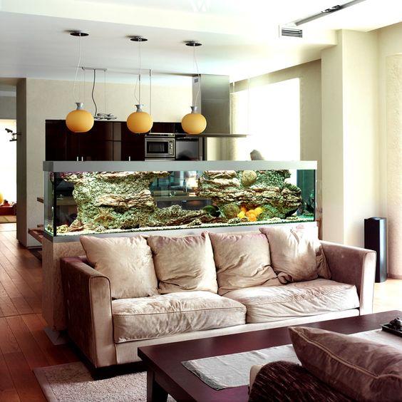 Akvárium v tomto případě tvoří předěl mezi kuchyní a obývacím prostorem. Je vysoké tak, aby na něj bylo vidět z obou stran.