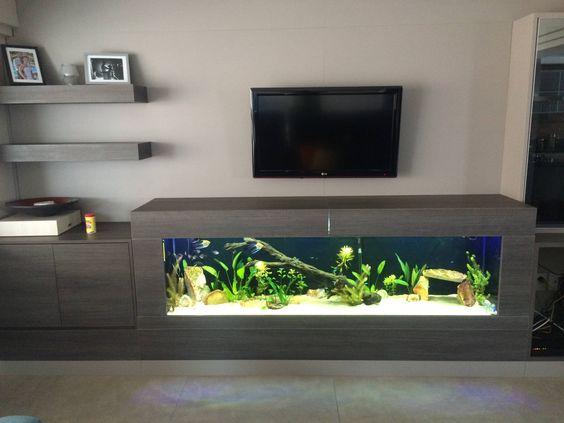 Televize nebo akvárium? Kdo vyhraje?