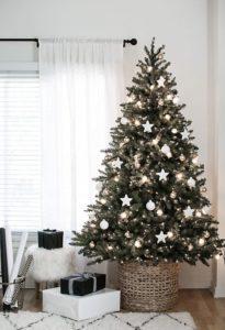 Hitem posledních letech jsou půjčovny vánočních stromků